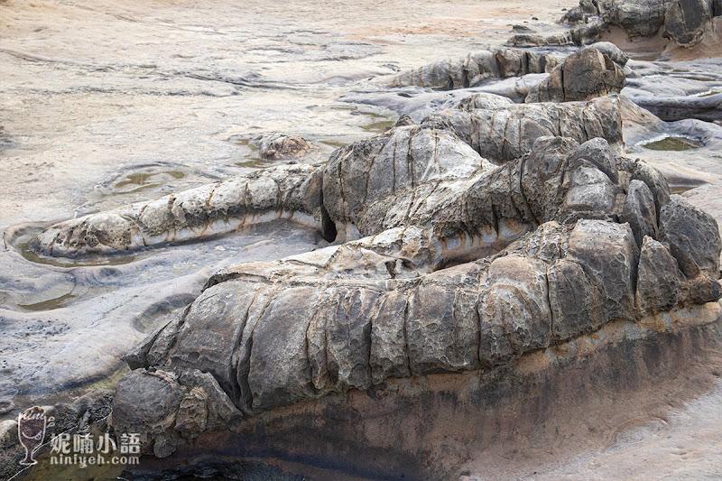 【萬里景點】野柳風景區。野柳地質公園必賞行程重點筆記