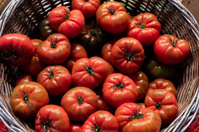 ماهي فائدة الطماطم للجسم - للبشرة - للتنحيف - للشعر