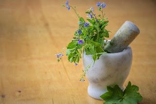astma zioła leczenie