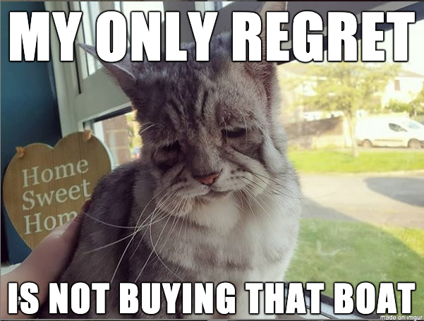 Introducing Regret Cat