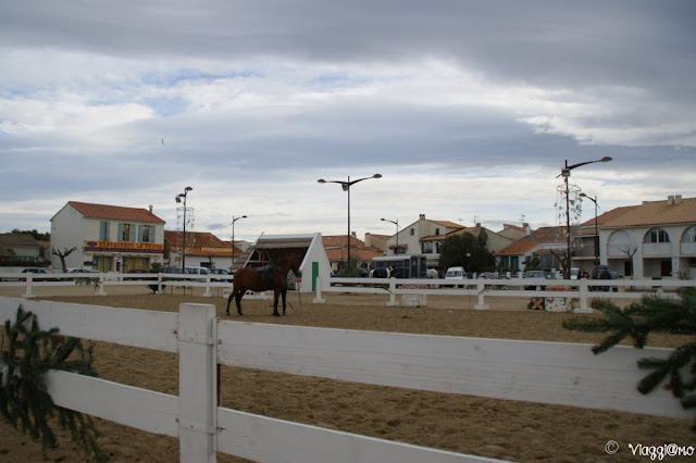 Lo spettacolo equestre presso la Place de Gitan