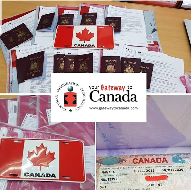 Study Visa Approvals
