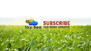 Sky bee channel with banner