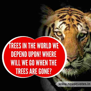 Quotes about Save Wildlife