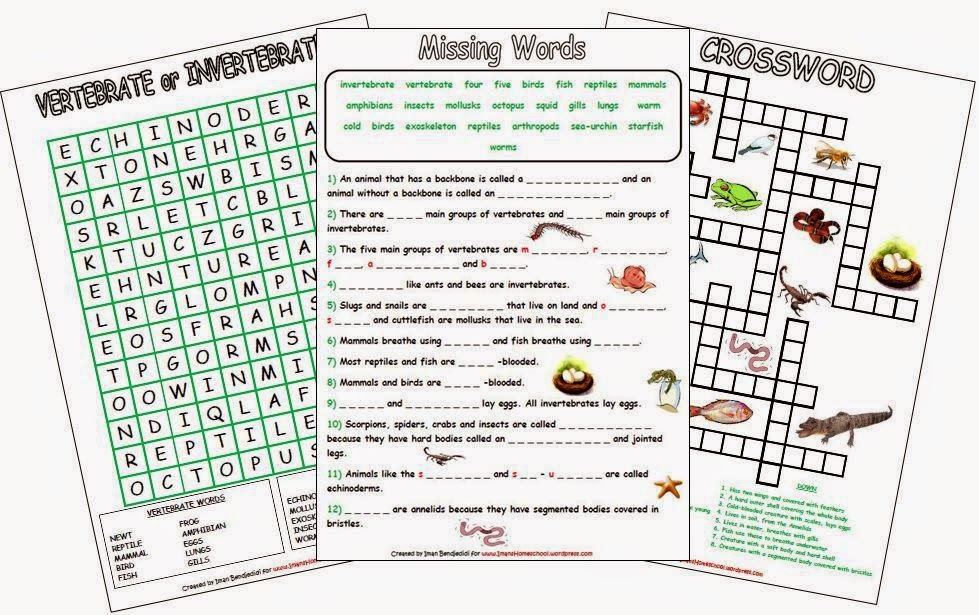 Iman 39 S Home School Animal Classification Worksheets
