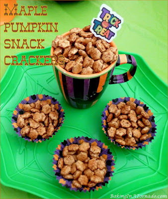 Maple Pumpkin Snack Crackers are a great fall treat. Share them by the campfire, tailgating or serve them in a fall vegetable soup. | Recipe developed by www.BakingInATornado.com | #recipe #snack