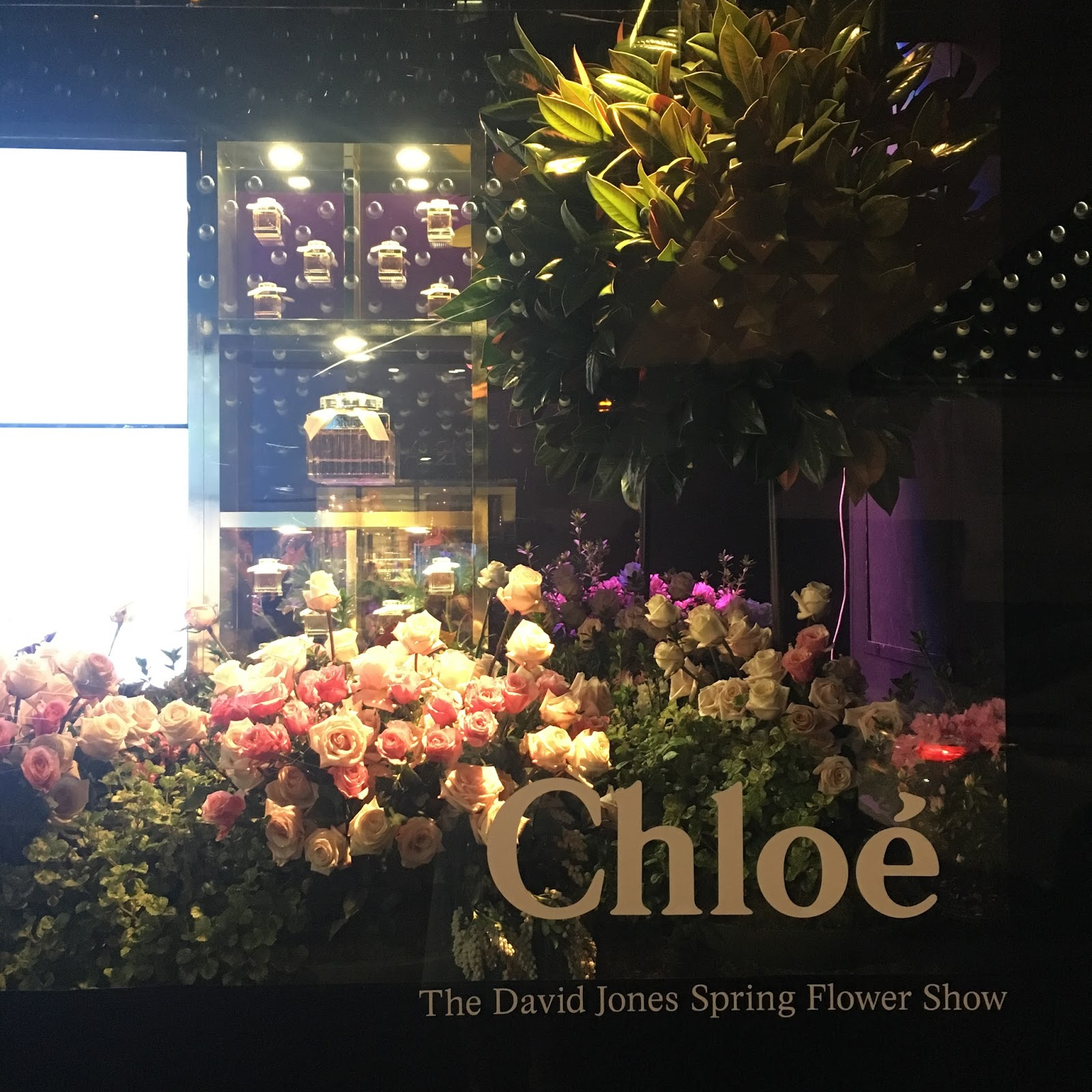 Aiyo David Jones Flower Show