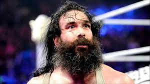 Wyatt Family Randy Orton Bray Luke Harper WWE Smackdown