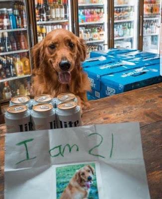 Alt genug um Bier zu kaufen lustig