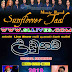 SUNFLOWER TAAL LIVE IN UDUGAMA 2019