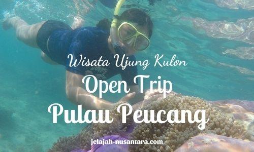 paket wisata open trip pulau peucang ujung kulon