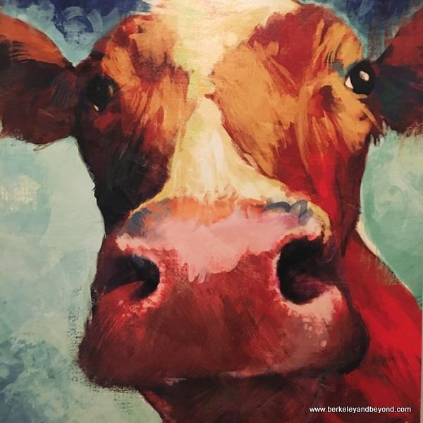 satisfied cow at Tips Roadside in Kenwood, California