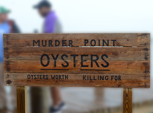 Murder Point Oysters are rich in flavor, creamy with a buttery taste and light metallic finish.