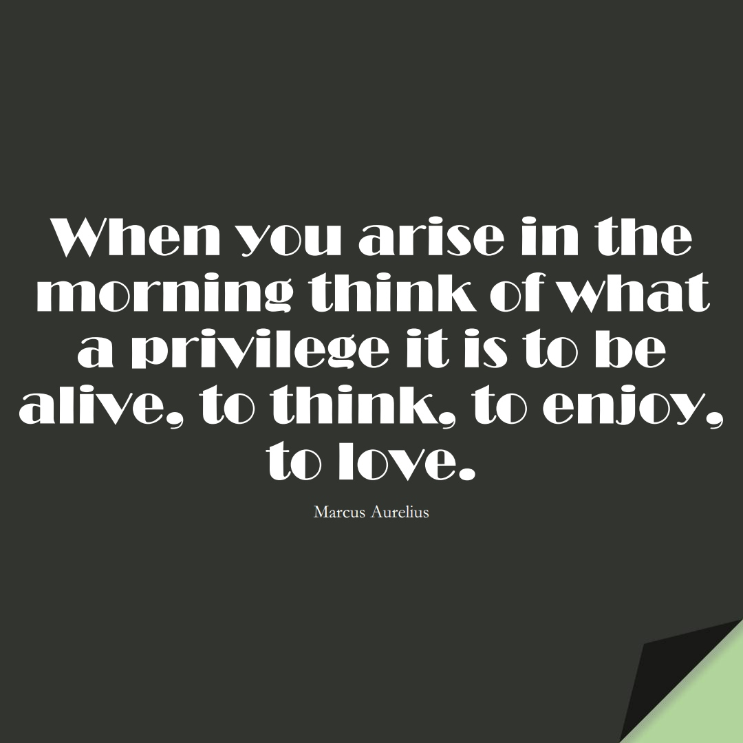 When you arise in the morning think of what a privilege it is to be alive, to think, to enjoy, to love. (Marcus Aurelius);  #StoicQuotes