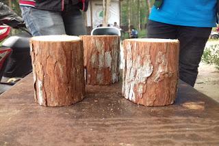 Sifat fisik dan mekanik kayu gerunggang (Cratoxylon arborescens Bl.) terdiri dari warna kayu, kilap, kesan raba, bau, berat, dan kekerasan kayu.