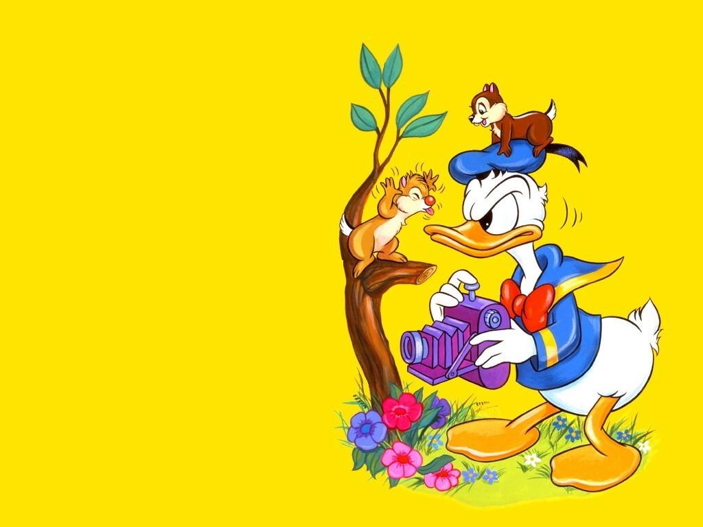Donald Duck Cartoon Wallpaper | Cartoon Images