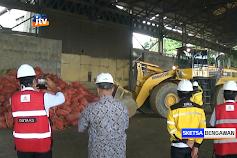 Kementan Musnahkan 11 Kontainer Jahe Impor Bertanah Di Tuban