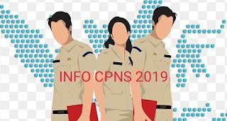Lowongan Kerja CPNS 2019 Kabupaten Tasikmalaya
