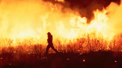 Crítica de la película O que arde