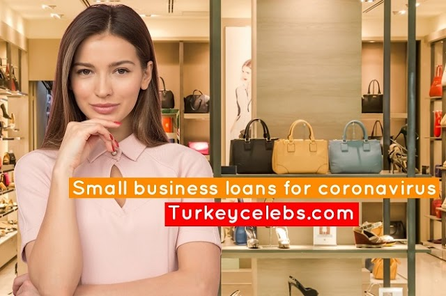 Small business loans coronavirus application status resources for owners.