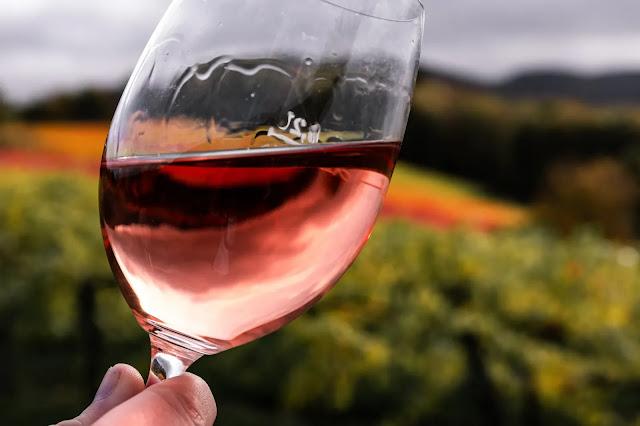 Una mano sosteniendo una copa con vino rosado sobre fondo de viñedo