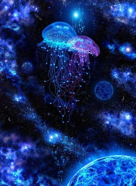 sứa không gian