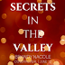 Cover Reveal - Secrets in the Valley by Brandy Nacole
