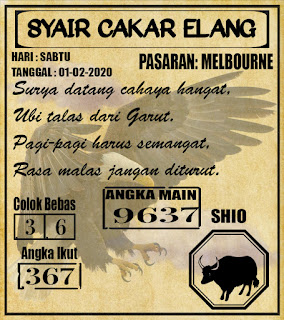 SYAIR MELBOURNE 01-02-2020