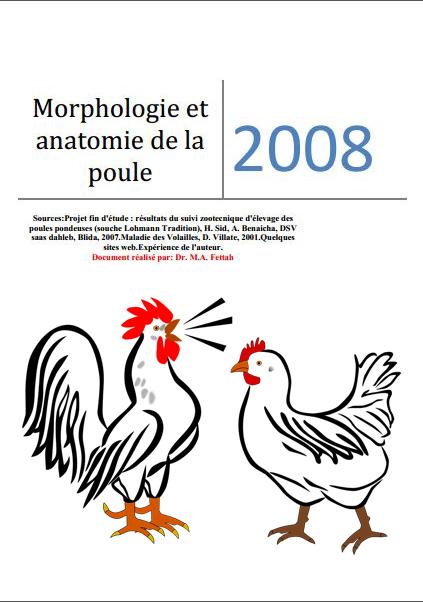 Morphologie et anatomie de la poule - WWW.VETBOOKSTORE.COM
