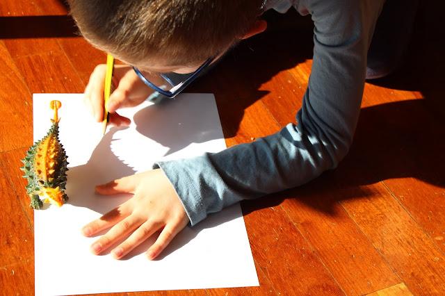 Criança a desenhar um dinossauro, aproveitando a luz do Sol