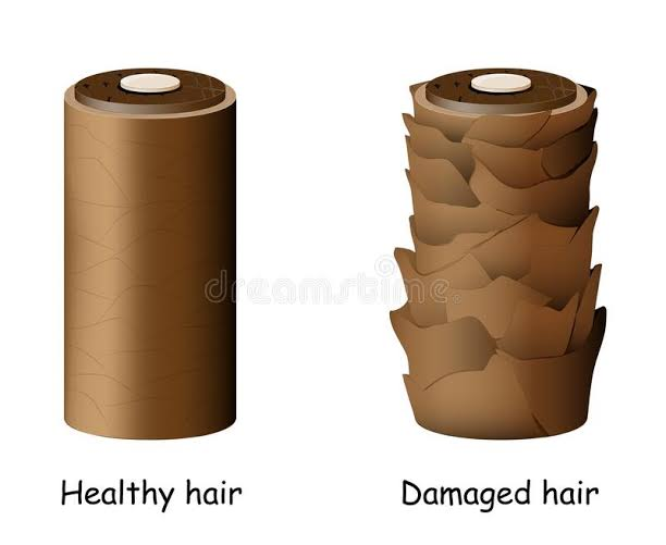 Healthy hair cuticle  versus damaged hair cuticle