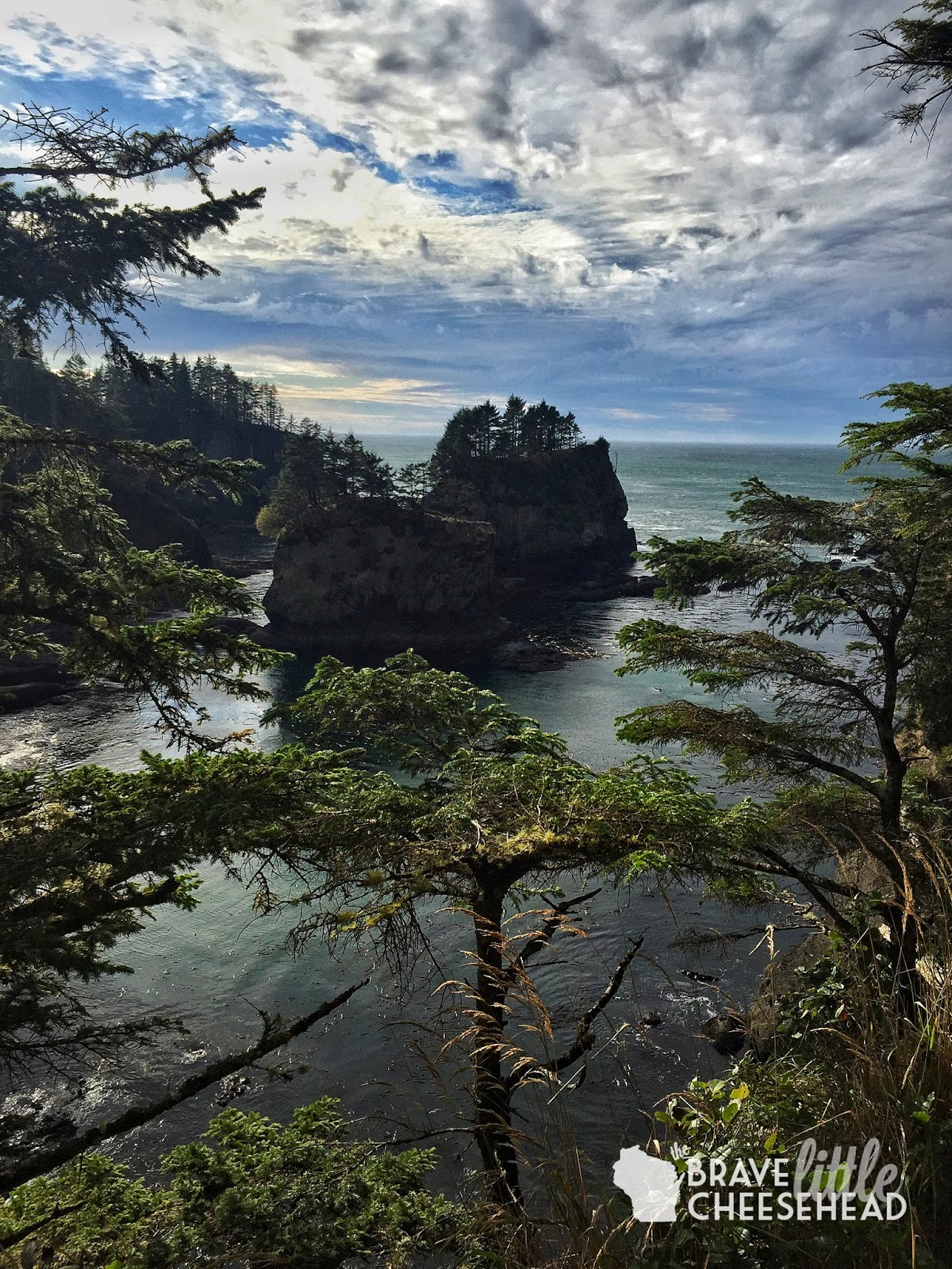 3-Day Washington Coast Road Trip to Olympic National Park | The Brave Little Cheesehead at bravelittlecheesehead.com