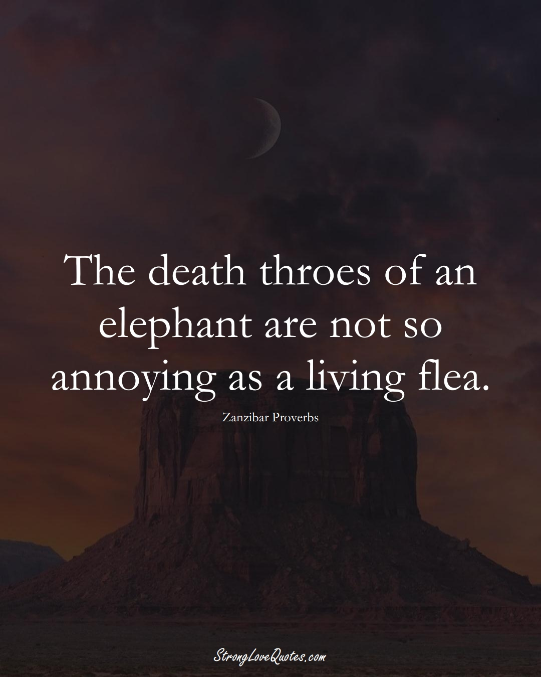 The death throes of an elephant are not so annoying as a living flea. (Zanzibar Sayings);  #AfricanSayings