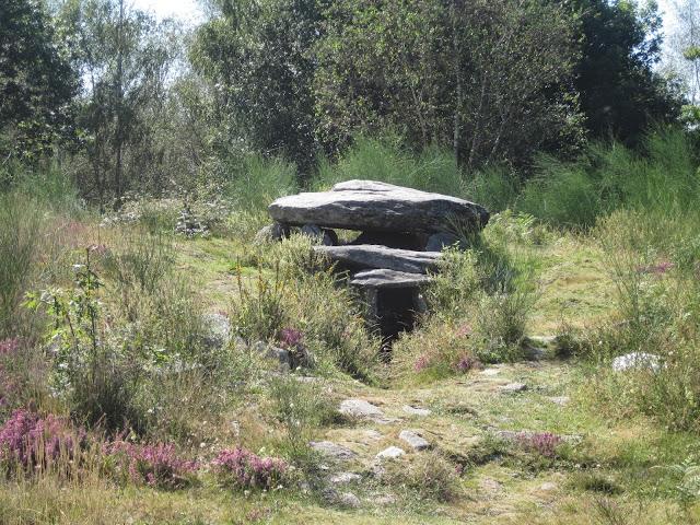 Mámoa do Rei en el Parque de Cotorredondo