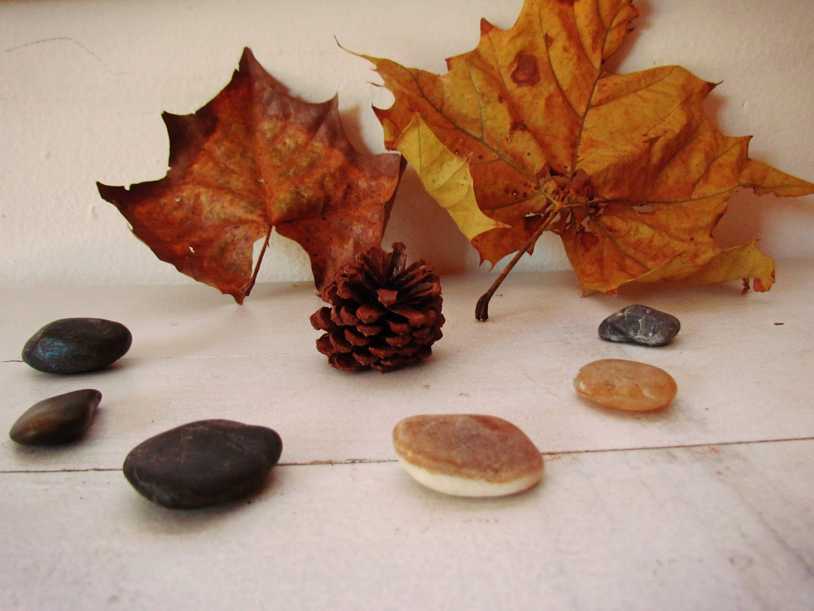 Fall Leaves, Pine Cones, and Smooth River Rocks Found in Nature + Table Display