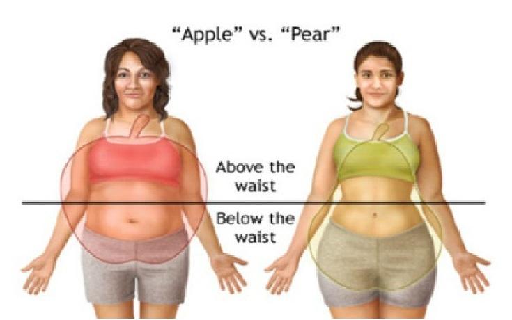 Cara Diet Sehat Menghilangkan Lemak di Tubuh
