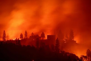 76 morti per gli incendi in California, America