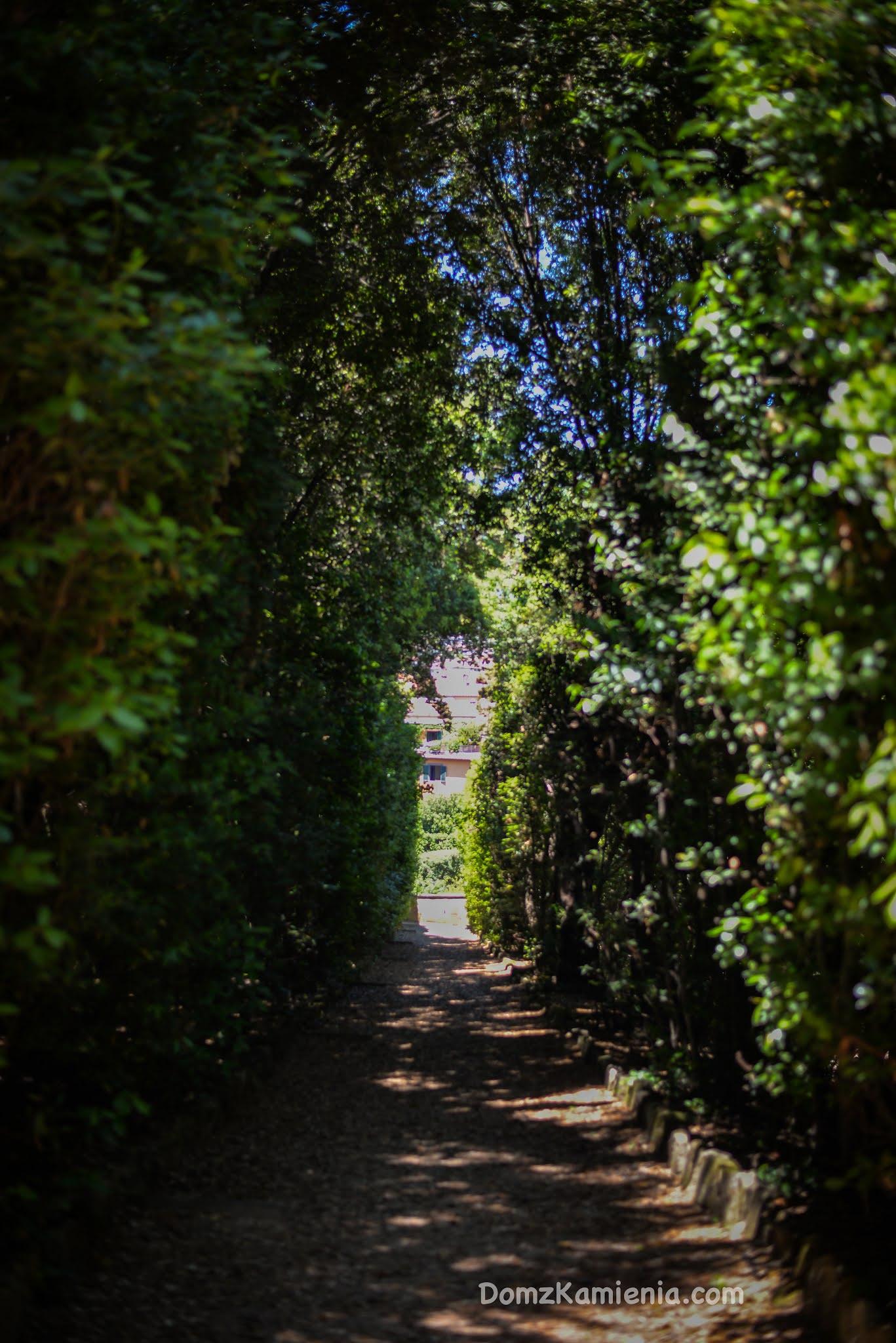 Ogród Boboli - Sekrety Florencji, Kasia Nowacka
