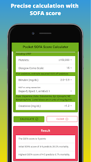 Precise calculation with  SOFA score