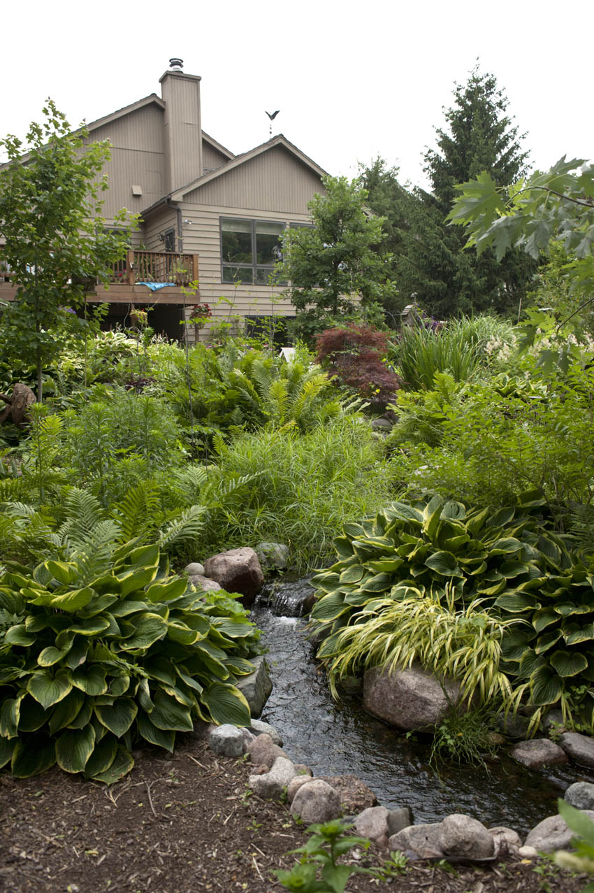 Water features, ponds, recreational ponds |Gentle Waterfall Pond