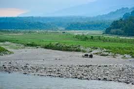 kaziranga-national-park-india, assam tourist places, tourist places at assam, tourist places of assam, tourist places in assam, tourist places in assam, tourist places in assam