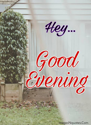 Good Evening Pictures HD Download for Whatsapp