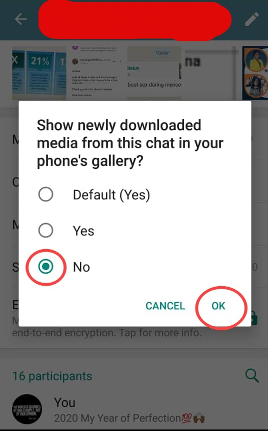 How to Block Files on Whatsapp Group Chats from Downloading to your Gallery.2