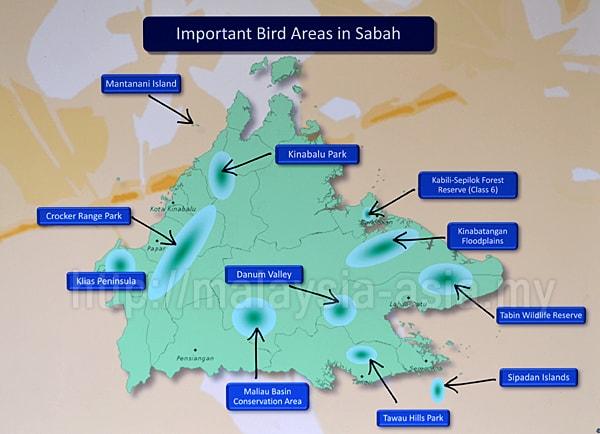 IBA Sabah Borneo Malaysia