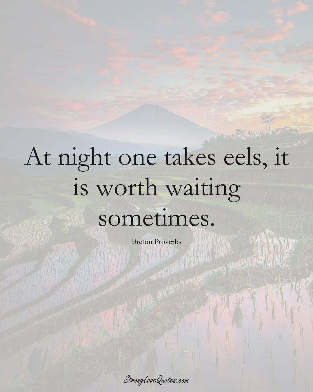 At night one takes eels, it is worth waiting sometimes. (Breton Sayings);  #aVarietyofCulturesSayings