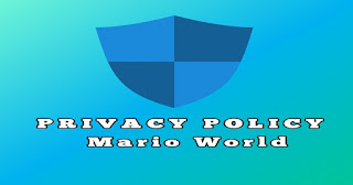 Privacy Policy for Mario World