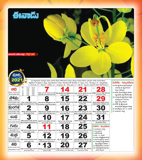 Eenadu Telugu Calendar March 2021