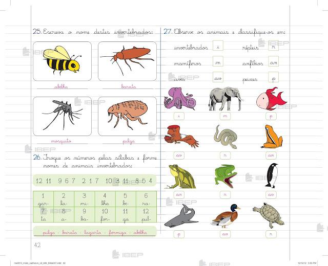 Caderno do Futuro 3 Ano Ciencias Download