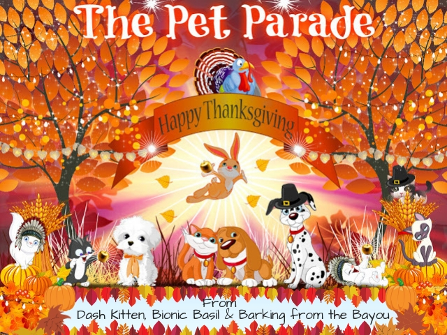 The Pet Parade Thanksgiving Banner 2020