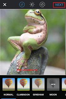 Cara Download Foto Dan Video Di Instagram iPhone 6